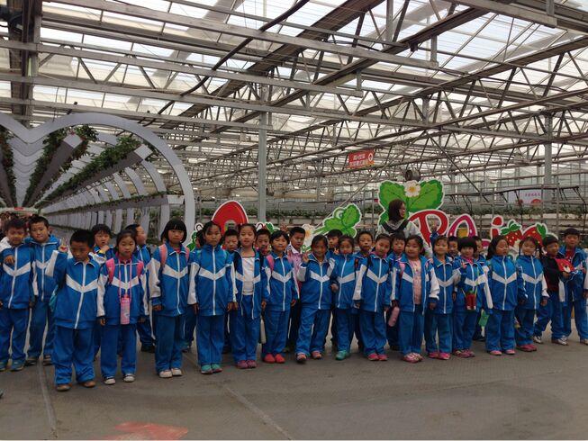 北京市昌平区北七家中心小学